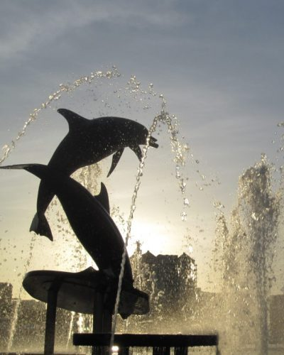 Dolphin statue with fountain