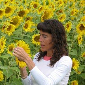 Anna in Sunflowers